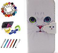 PU Leather Coloured Drawing Or Pattern Holster Package Includes Stand Anti-Dust Plug Stylus for iPhone 5C