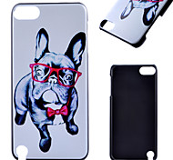 Eye Dog Pattern Frosted PC Material Phone Casefor iPod Touch 5