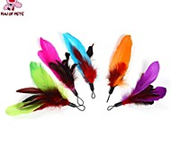 FUN OF PETS® 5 Piece A Packed  Coloured  Feather Shaped Pet Dogs Cats Playing Stick Replacement