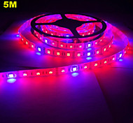 5M MORSEN® 5050 Grow LED Flexible Strip Tape Light 4 Red 1 Blue Aquarium Greenhouse Hydroponic Plant Growing Lamp (12V)