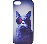 Katzenmalerei Muster PC Kasten für iPhone 5 / 5s