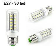 LED a pannocchia 36 SMD 5730 FYK Tubolare E26/E27 10W Decorativo 800 LM Bianco caldo / Bianco 1 pezzo AC 110-130 V