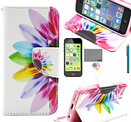 LEXY® Colorful Sunflower Pattern PU Full Body Leather Case with Screen Protector and Stylus for iPhone 5C