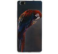 modello pappagallo TPU soft phone per Huawei p8 lite