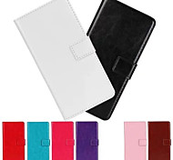 PU fou motif de cheval business case flip en cuir pour iPhone 5 / 5s (couleurs assorties)
