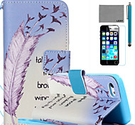 LEXY® Learn To Fly Pattern PU Full Body Leather Case with Screen Protector and Stylus for iPhone 5C