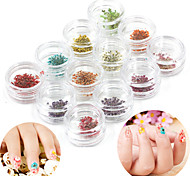 12 Color dried flower Nail Art Decorations