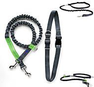 Dog Collar / Leash Adjustable/Retractable / Running Black Nylon