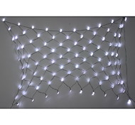 1.5M*2M 100-LED Solar Net String Lights