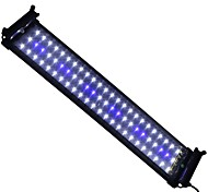 20 Inches(50cm) LED Aquarium Light AC 100-240V Blue and White Extendable Bracket LED Fish Lamp UK Plug