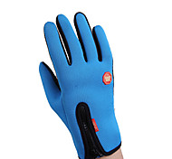 Winter Gloves Unisex Keep Warm Ski & Snowboard / Snowboarding Red / Black / Blue Canvas Free Size-Others