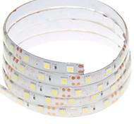 1M 60x5050LED 15W Flexible LED Light Strips Warm White / White / RGB / Red / Yellow / Blue / Green Waterproof DC12V