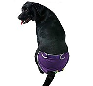 Solid Color Black/Pink/Puple/Blue Physiological Pants  for Dogs Pets