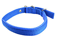 Dog Collar Adjustable/Retractable Solid Red / Blue Nylon