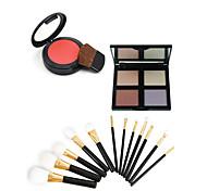 4 Blush+ShadowMakeup Brushes Wet Eyes / Face Uneven Skin Tone / Dark Circle Treatment China Others