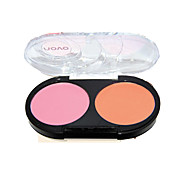 2 Blush Matte Powder Coloured gloss Face Multi-color China