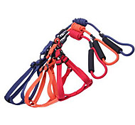 Dog Leash Adjustable/Retractable Solid Red Black Blue Purple Orange Fabric Nylon