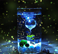 Mini Aquariums Ornament Glass