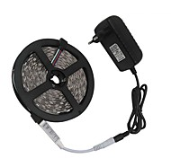 3528 5M 300LEDs RGB LED Strip Light and 3Keys Remote Controller and DC 12V 3A Power Supply EU/US/UK/AU plug