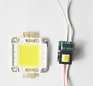 8W COB LED DIY Chip Board Panel Bead with LED Power Supply Driver