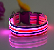 Collar Portable Adjustable LED Light Rainbow Nylon