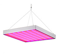 100 Вт LED лампа для теплиц 1365 SMD 3528 5292-6300 lm Красный Синий Водонепроницаемый V 1 шт.