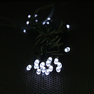 Solar Powered 3M 30-LED White Light 2-Mode LED String Lamp