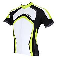 PALADIN® Cykeltrøje Herre Kort Ærme Cykel Åndbart / Hurtigtørrende / Ultraviolet Resistent Trøje / Toppe 100% Polyester StripetForår /