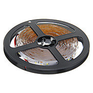 ZDM ™ 5m 24w 300x3528smd 6000k koel wit licht led strip lamp (DC 12V)