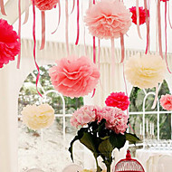 10 inch Tissue Paper Pom Poms Wedding Party Decor Craft Paper Flowers Wedding(Set of 4)