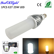 1 stuks YouOKLight E26/E27 25 W 114 SMD 2835 2000 LM Warm wit / Koel wit T Decoratief Maïslampen AC 220-240 / AC 110-130 V