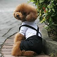 犬のためのスマートなカジュアルスタイルのシャツとパンツ(XS-XL)