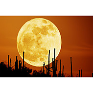 Rechargeable 3D Printing Moon LED Night Light - WHITE LIGHTWARM WHITE LIGHT