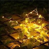 20-LED 2M Waterproof  Plug Outdoor Christmas Holiday Decoration Light LED String Light