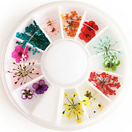 12colours Natural Dried Flower Nail Art Decorations