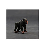 Action Figures & Stuffed Animals Model & Building Toy Toys Novelty Monkey Plastic Black