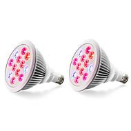 24W E27 LED-kasvivalo 12 Teho-LED 800 lm Punainen Sininen V 2 kpl
