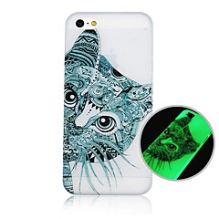 Cartoon Cat Pattern Fluorescence after Sunniness Hard Back Case for iPhone 4/4S