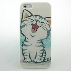 cas dur de modèle de chaton mignon pour iPhone 5 / 5S