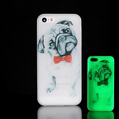 Pug Pattern Glow in the Dark Hard Case for iPhone 4/4S