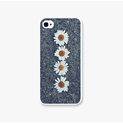 Tied  for The Chrysanthemum Pattern Pc Phone Case Back Cover Case for iPhone5/5