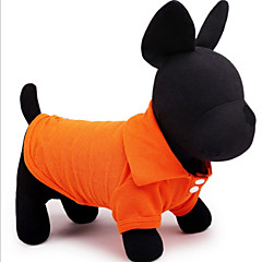 Hundar T-shirt / Skjorta Röd / Grön / Blå / Rosa / Gul / Orange Sommar Enfärgat