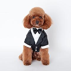 Cat / Dog Coat / Tuxedo Black Winter / Spring/Fall Wedding / Cosplay