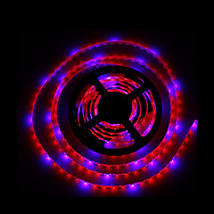 5m SMD5050 4red1blue 300LED IP65 sistemi idroponici pianta principale coltivano la luce impermeabile led (DC12V)