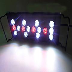 Akvarier LED-belysning Rød Energibesparende Justérbar LED lampe 220V