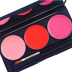 Pro 3 kleur lip gloss kit mat waterdichte dekking duurende 24 uur niet wrijven vloeibare lippenstift cosmetische palet