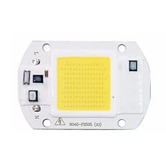 diy koçanı çip led 110v 220v yüksek güç 20w girişi akıllı ic sürücü led lamba ampul sel ışık spot (1 adet)