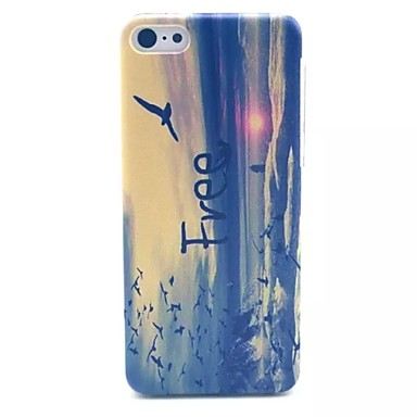 Asuka Letter Pattern PC Material Phone Case for iPhone 5C