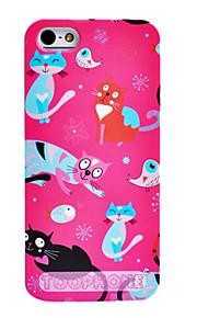 조이 랜드 다채로운 만화 고양이와 새 패턴은 아이폰 5/5S (분류 된 색깔)를위한 케이스를 위로 ABS