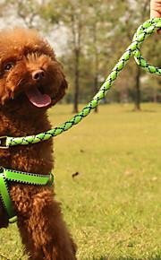 Arreios - Vermelho/Verde/Azul - de Náilon - Retratável - Cães